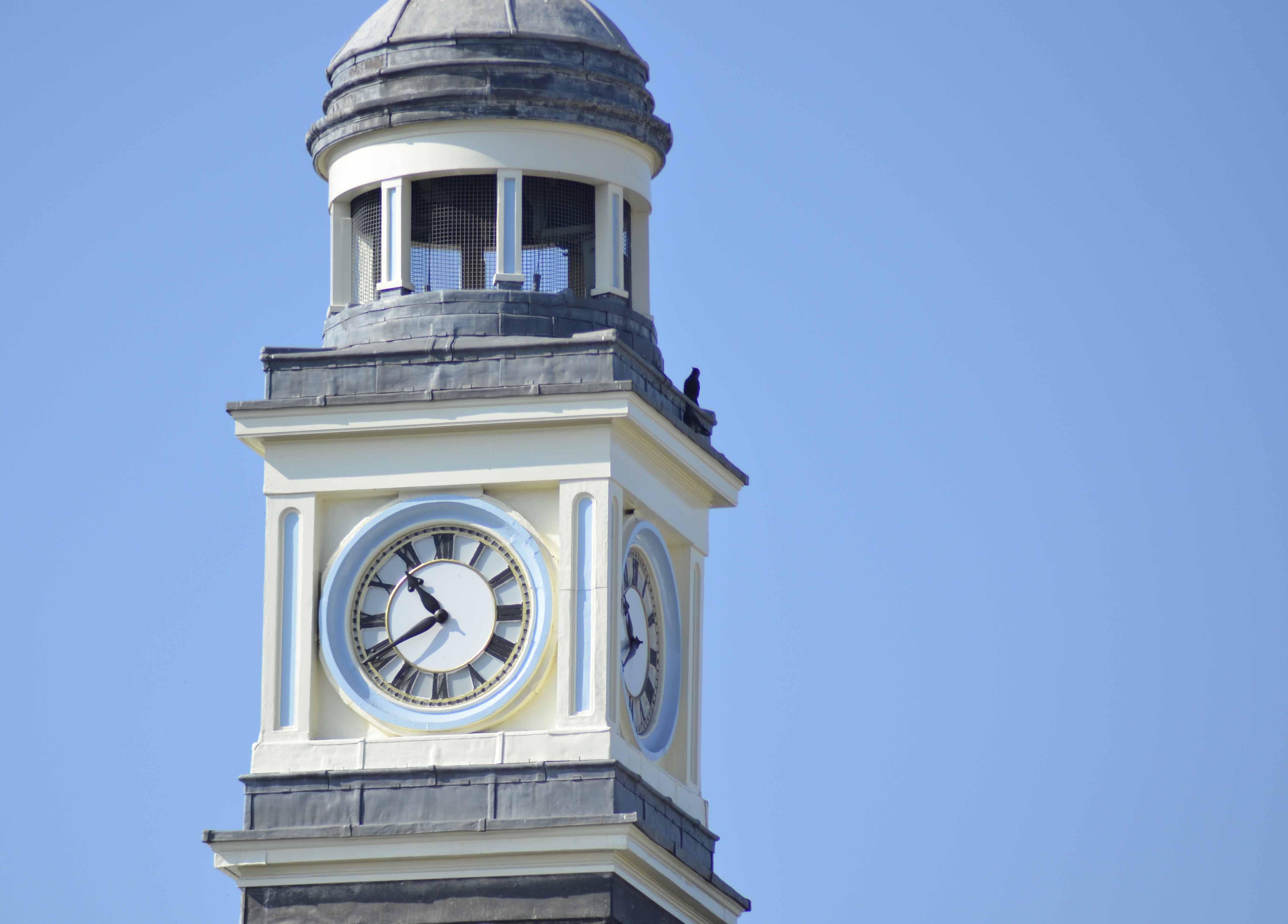 Chard Guildhall clock